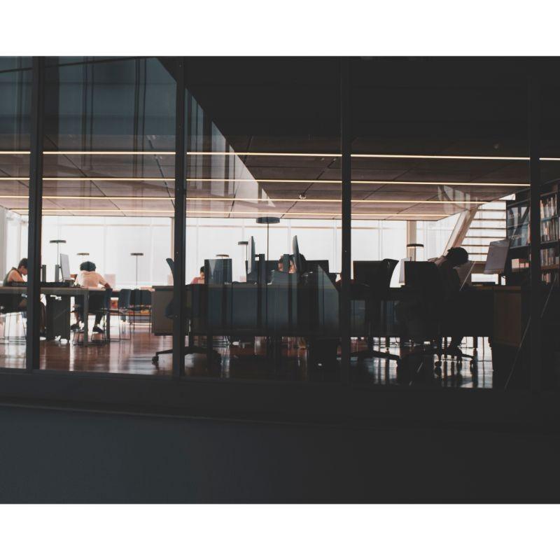 Empresas especializadas em licitações